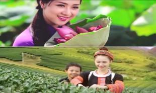 Hình ảnh Việt Nam tuyệt đẹp trong clip quảng bá du lịch
