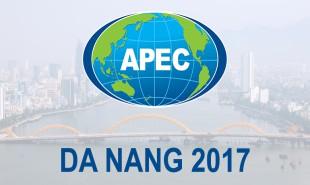 """Đà Nẵng đăng cai """"Tuần lễ cấp cao APEC 2017″"""