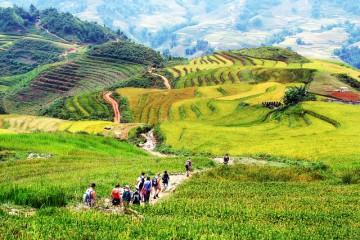 Tour Đà nẵng đi Hà Nội – Sapa 4 Ngày 3 Đêm