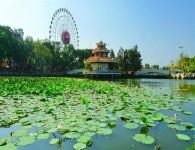Tour Quảng Ngãi – Hồ Chí Minh – Vũng Tàu – Phan Thiết
