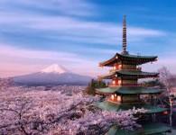 Tour Đà Nẵng – Nhật Bản