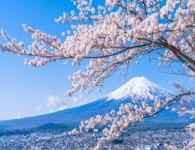 TOUR TOKYO – NÚI PHÚ SỸ 4 Ngày